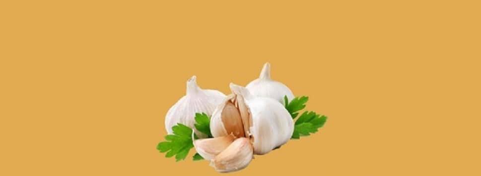 5 health benefits of garlic