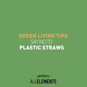 Green Living Tips - No to Plastic Straws