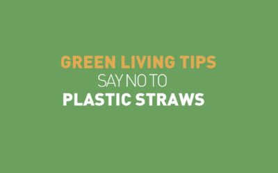 No to plastic straws