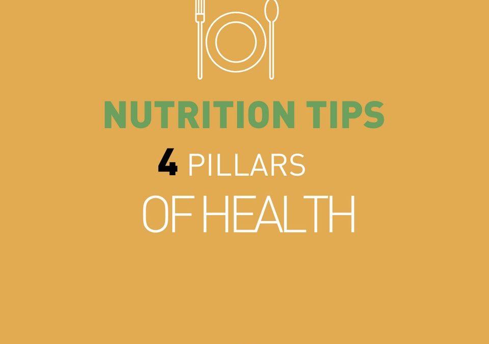 The 4 pillars of health